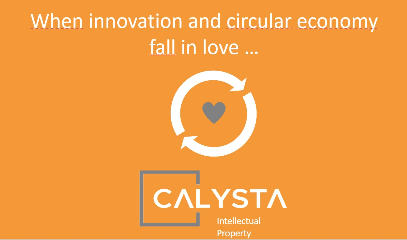 When innovation and circular economy fall in love …